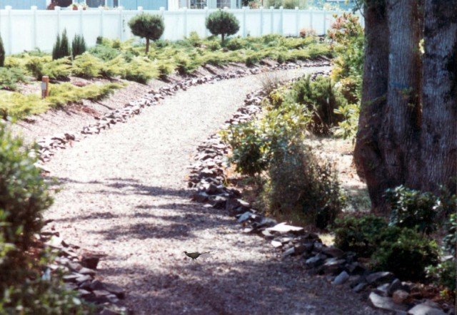 Photo 2 walking trail