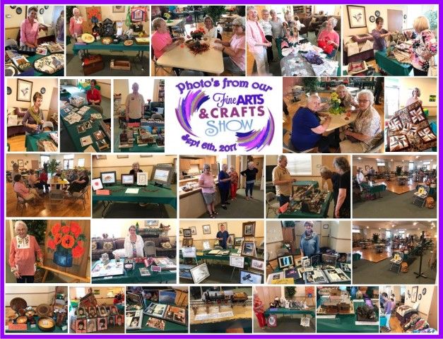 Picture8 Arts and Craft show 2017