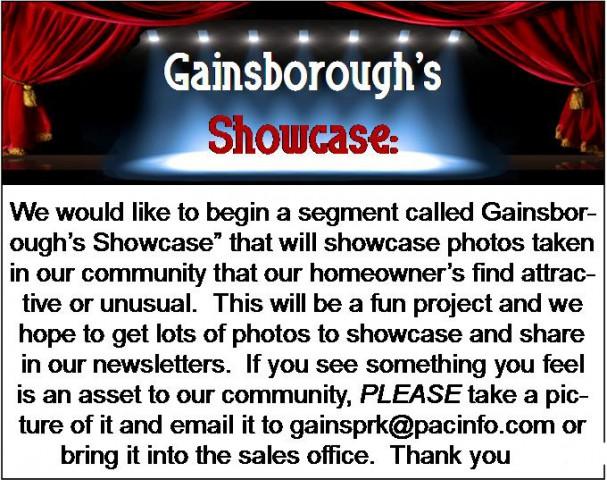 showcase explanation web